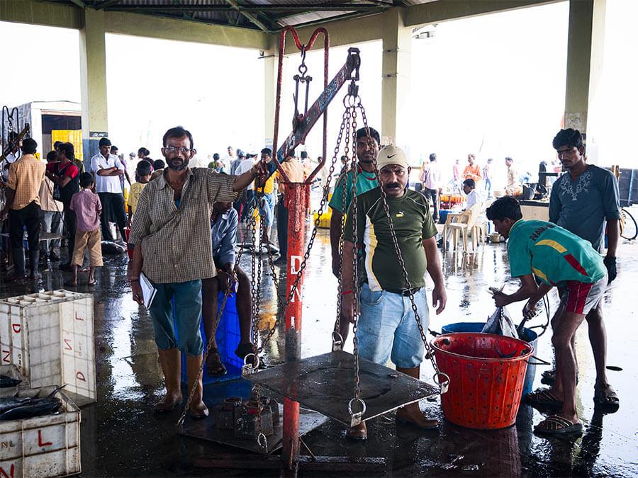 luigi de santis Fish market Mumbai Sasson Docks